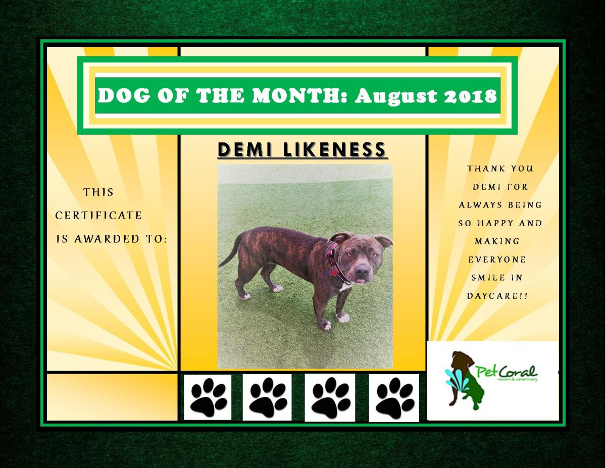 DOG OF THE MONTH- August 2018